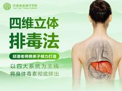 肝脏四维立体排毒法